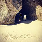 #Sonnenstrahlen  Melarima sendet Grüße aus der Mother City - unterstützt von diesen zwei süßen Pinguinen :))